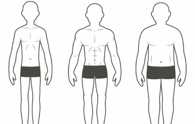 The Three Different Body Types and How They Affect Your Training